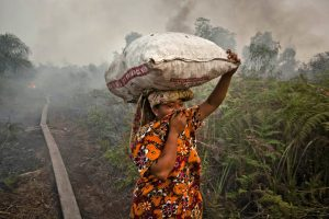 SUMATRA ISLAND, INDONESIA - JUNE 27: A woman walks trough haze as a forrest fire burns bushes and fields June 27, 2013 in Siak Regency, Riau Province, Indonesia. The fires on Sumatra have caused record smog in Malaysia and Singapore. Sumatra has stepped up efforts to fight the fires to relieve the conditions. Eight farmers have been arrested for setting the fires on Sumatra Island. (Photo by Ulet Ifansasti/Getty Images)