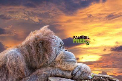 Certificazione Palm Oil Free per Emds Italy